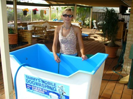 dogwashing hydrobath